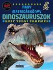 Dinoszauruszok /amit tudni érdemes - nagy matricáskönyv