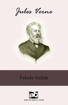 Jules Verne - Fekete Indiák [eKönyv: epub, mobi]