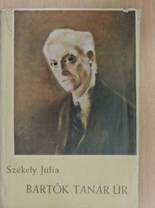 Székely Júlia - Bartók tanár úr [antikvár]