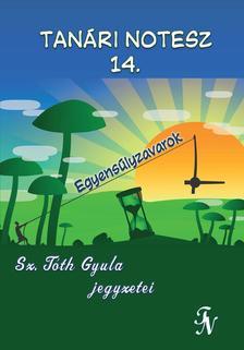 Sz. Tóth Gyula - Tanári notesz 14. Egyensúlyzavarok