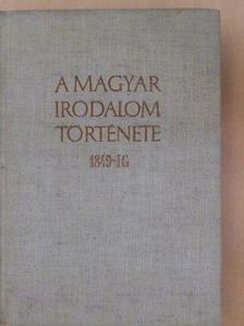 Bán Imre - A magyar irodalom története 1849-ig [antikvár]