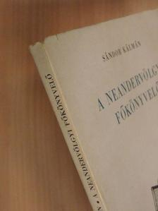 Sándor Kálmán - A neandervölgyi főkönyvelő [antikvár]
