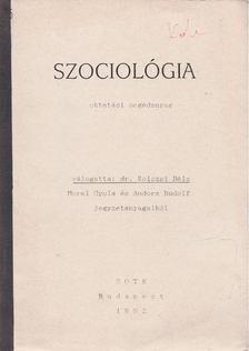 Kolozsi Béla - Szociológia [antikvár]