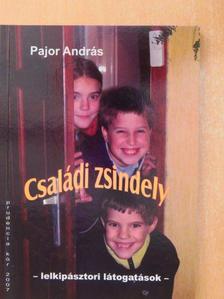 Pajor András - Családi zsindely [antikvár]
