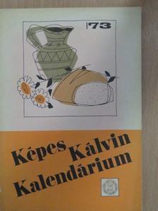 Dobó László - Képes Kálvin Kalendárium 1973 [antikvár]