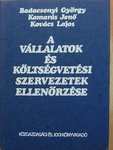 Badacsonyi György - A vállalatok és költségvetési szervezetek ellenőrzése [antikvár]