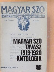 Ádám Ferenc - Magyar Szó-Tavasz 1919-1920 [antikvár]