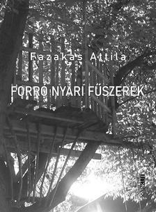 Fazekas Attila - Forró nyári fűszerek