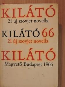 Anatolij Glagyilin - Kilátó 66 [antikvár]