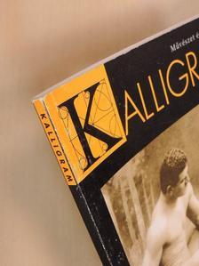 Bánki Éva - Kalligram 2004. január [antikvár]