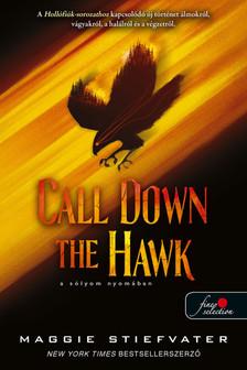 Maggie Stiefvater - Call Down the Hawk - A sólyom nyomában (Álmodok-trilógia 1.)