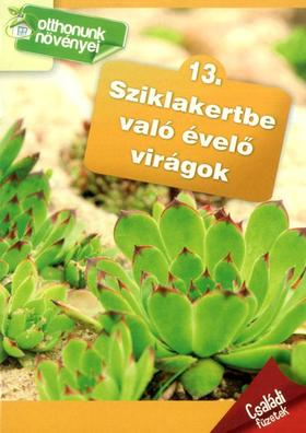 Sziklakertbe való évelő virágok- Otthonunk növényei 13.