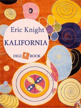 Eric Knight - Kalifornia [eKönyv: epub, mobi]
