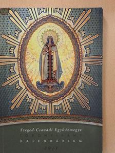 Ágoston Julián - Szeged-Csanádi Egyházmegye Toronyirány Kalendárium 2011 [antikvár]