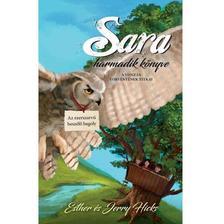 Esther és Jerry Hicks - Sara harmadik könyve