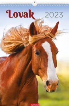 20T0094-007 - LOVAK FALINAPTÁR - 2020