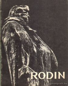 Jianou, Ionel - Rodin [antikvár]