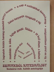 Ambrus András - Szavakból katedrálist (dedikált példány) [antikvár]