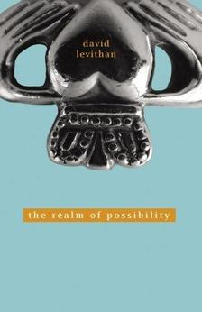 David Levithan - The Realm of Possibility [antikvár]