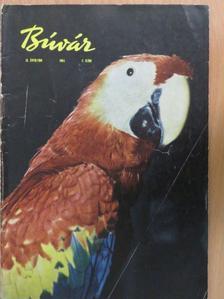 Barabás Endre - Búvár 1964. július-augusztus [antikvár]