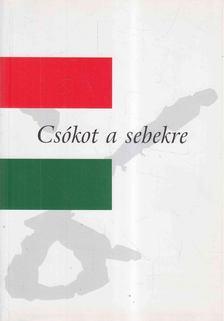 Szabó István - Csókot a sebekre [antikvár]