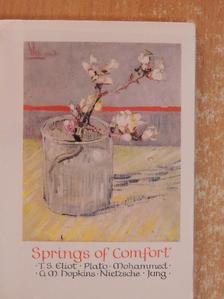 C. G. Jung - Springs of Comfort [antikvár]
