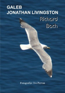 Diana Pavièiæ-Hani¹ Richard Bach, - Galeb Jonathan Livingston [eKönyv: epub, mobi]