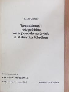 Bálint József - Társadalmunk rétegződése és a jövedelemarányok a statisztika tükrében [antikvár]