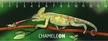 Kaméleon 3D vonalzó 148x55 mm
