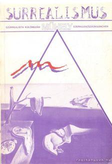 Villányi László - Műhely - Szürrealista különszám 1990 [antikvár]