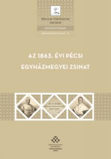 Damásdi Zoltán - Az 1863. évi pécsi egyházmegyei zsinat