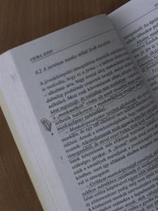 Andor Mihály - Innovatív önkormányzatok [antikvár]