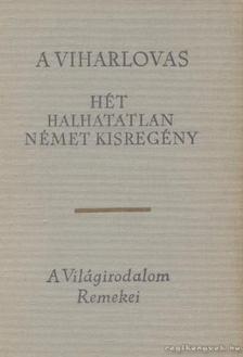 Lator László - A viharlovas [antikvár]