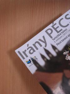 Győrffy Zoltán - Irány Pécs! 2011/1. tavasz [antikvár]