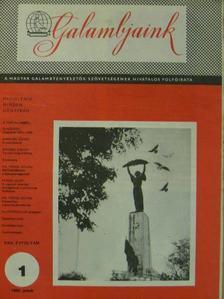 Bencsik Gábor - Galambjaink 1980. január [antikvár]