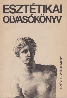 Kis Tamás - Esztétikai olvasókönyv [antikvár]