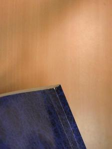 Bódis Ildikó - Évlapok a Talentum Általános Iskola, Gimnázium és Kézműves Szakiskola tizenegyedik-tizenkettedik évéből [antikvár]
