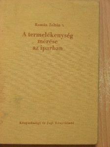 Román Zoltán - A termelékenység mérése az iparban [antikvár]
