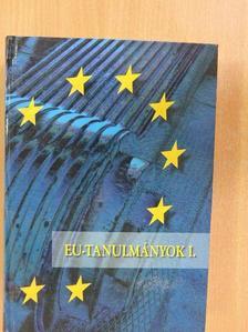 Andreides Gábor - EU-tanulmányok I. [antikvár]