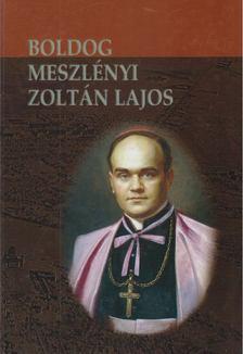 Beke Margit - Boldog Meszlényi Zoltán Lajos püspök élete és halála [antikvár]