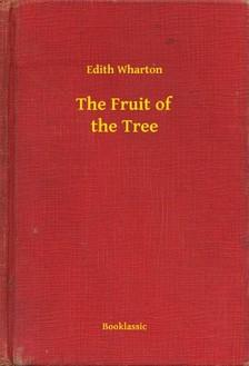 Edith Wharton - The Fruit of the Tree [eKönyv: epub, mobi]