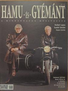 Hidasy Judit - Hamu és Gyémánt 2001. ősz [antikvár]