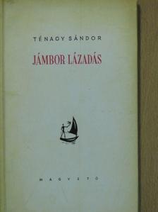 Ténagy Sándor - Jámbor lázadás [antikvár]