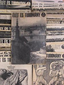 H. Gyürky Katalin - Élet és Tudomány 1973. (nem teljes évfolyam) [antikvár]