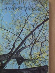 Köteles Pál - Tavaszi játék [antikvár]