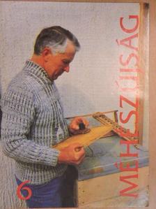 Borbély Gábor - Méhészújság 1995. június [antikvár]