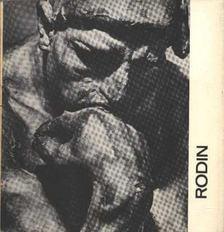 Farkas Zoltán - Rodin [antikvár]