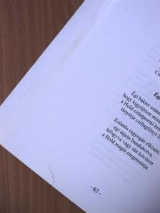 B. Molnár Lóránt - Rábatáj antológia 2009 [antikvár]