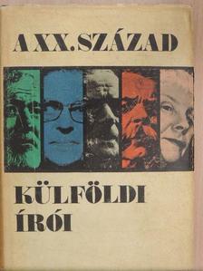 Aniot Judit - A XX. század külföldi írói [antikvár]