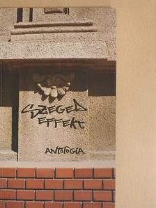Árpás Károly - Szeged effekt [antikvár]